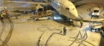 That snow penis